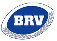 brv-logo